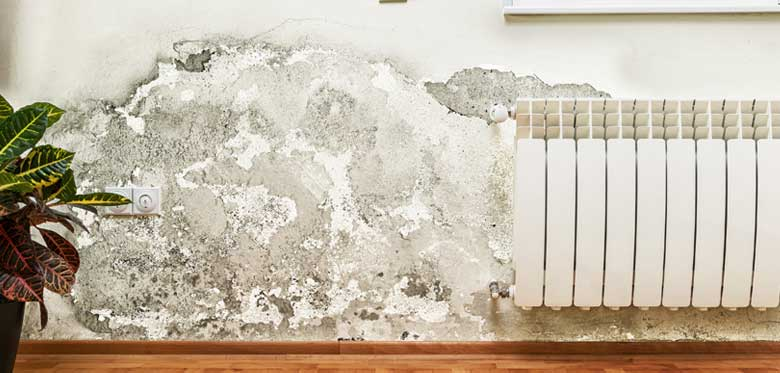 Is your cavity wall insulation causing problems in your home?